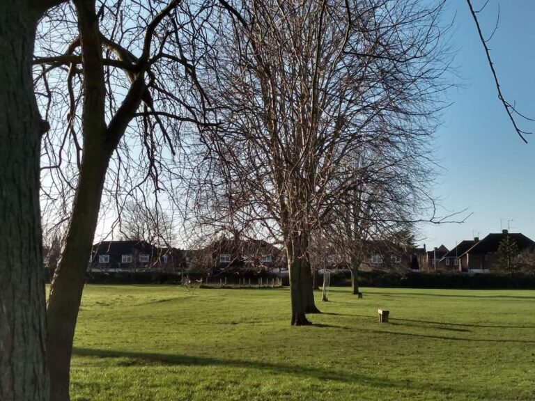 Photograph of Elmfield Park in Cheltenham.